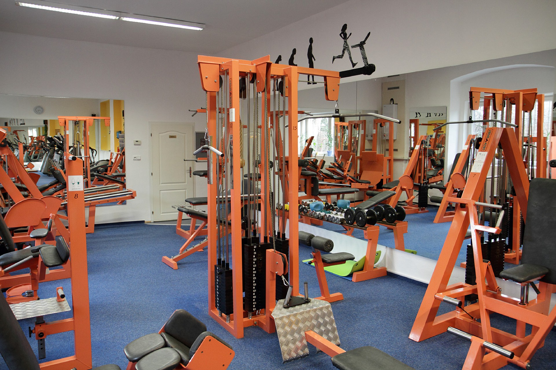 Fitness trenér Profitsport, Plzeň
