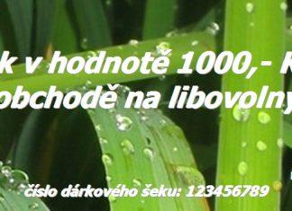 Dárkový šek 1000